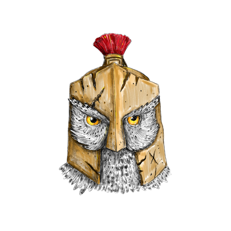정면에서 본 스파르타 헬멧을 착용하는 올빼미의 문신 스타일 그림.
