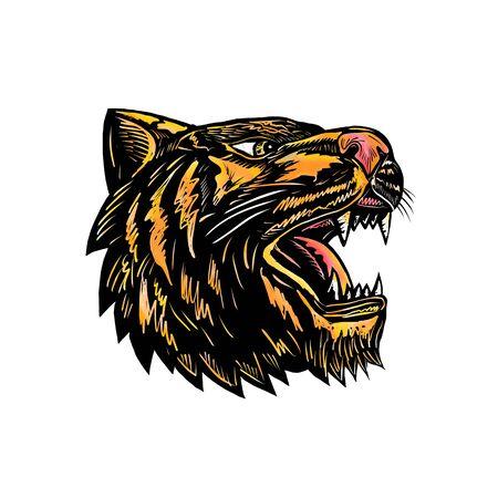 Illustration de style de gravure sur bois d'une tête de tigre grognant en colère, vue de côté sur fond isolé. Banque d'images - 87095787