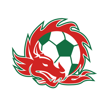 Retro style illustration of a Welsh Dragon coling around a Soccer Ball on isolated background.