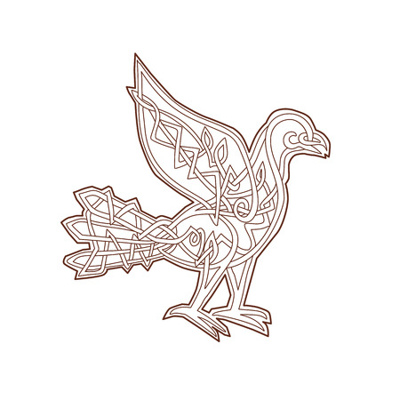 Celtic Knotwork or pseudo-Celtic linear knot style illustration of a Dove, pigeon bird viewed from side on isolated background.