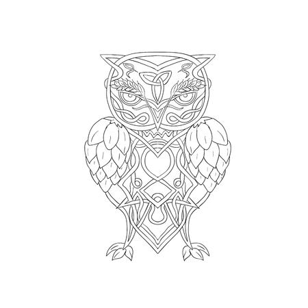 Keltische Knotwork-illustratie van een gestileerde die uil met gerst boven oog en hop voor vleugels van voorzijde op geïsoleerde achtergrond worden bekeken.