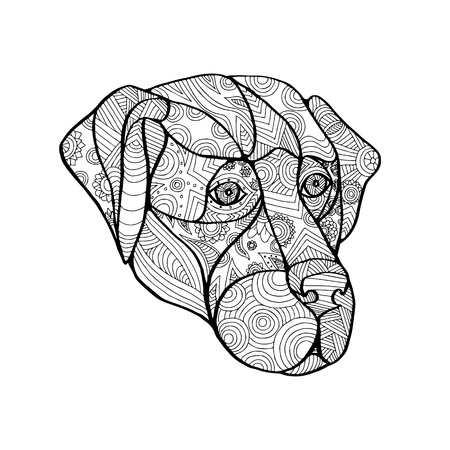 Mandala style illustration of a labrador retriever dog head viewed from front on isolated backgound.