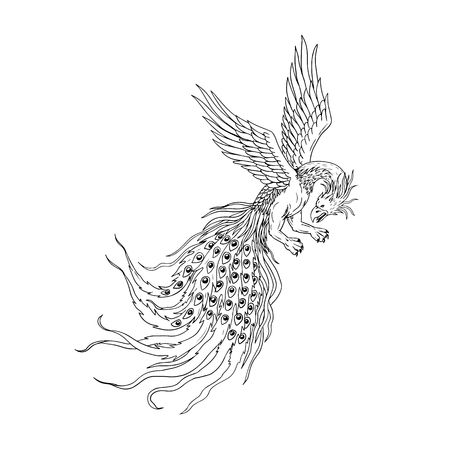 Drawing sketch style illustration of a simorg, simurgh, simorg, simurg, simoorg, simorq, or simourv as a mythical bird in Iranian Persian mythology that has a head of a wolf with beak of eagle, legs of lion, and tail of a peacock. Illustration