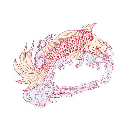 잉어 또는 nishikigoi, 색깔 된 품종의 아무르 잉어, 격리 된 배경에 파도 위로 점프의 스케치 스타일 그림 그리기. 일러스트