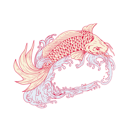 Drawing sketch style illustration of a Koi or nishikigoi, fish of colored varieties of Amur carp, jumping over waves on isolated background.