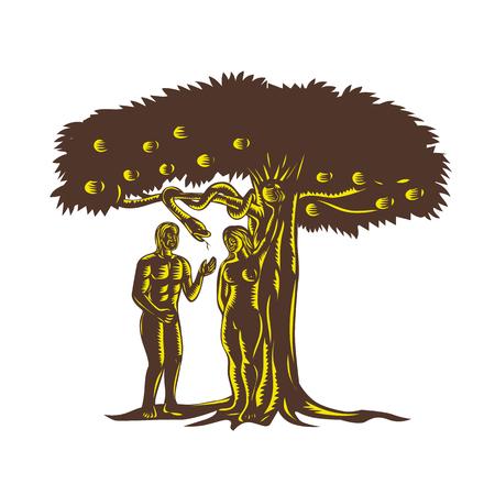 Illustration de style rétro gravure sur bois représentant la chute de l'homme montrant Adam avec Eve dans le jardin d'Eden ramassant les fruits de la pomme de l'arbre après avoir été tenté par le serpent serpent maléfique.