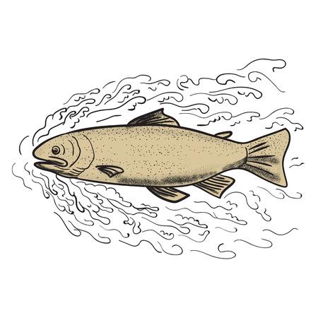 격리 된 배경에 파도 통해 앞서 단조 갈색 송어의 문신 스타일 그림.