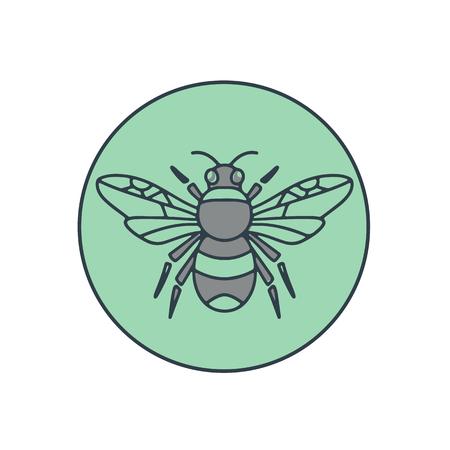 円の中に孤立した背景に設定熊蜂のモノラル ライン イラスト。