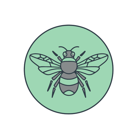 Mono line illustration of a bumble bee set inside circle on isolated background.