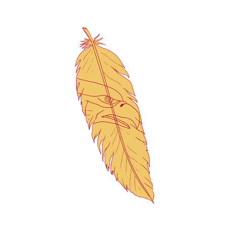 Drawing sketch style illustration of a bird feather with sea eagle head drawing inside on isolated background.