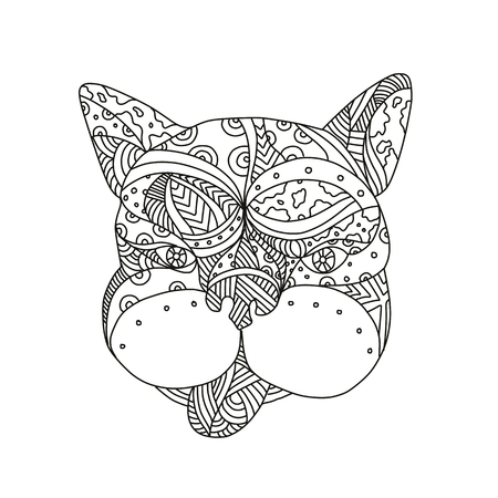 Doodle art illustration of head of French bulldog or frenchie dog viewed from front on isolated background done in black and white. Иллюстрация