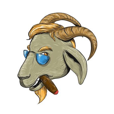 시가 흡연 hipster 염소의 드로잉 스케치 스타일 그림 및 측면에서 볼 격리 된 배경에 선글라스를 착용.