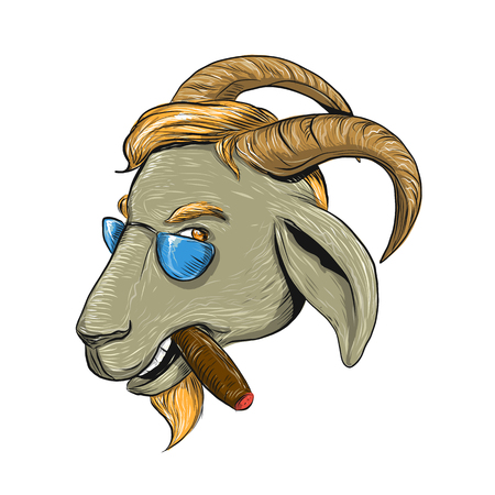 Het trekken van de illustratie van de schetsstijl van een hipstergeit die een sigaar roken en zonnebril dragen die van kant op geïsoleerde achtergrond wordt bekeken. Stockfoto - 94974412
