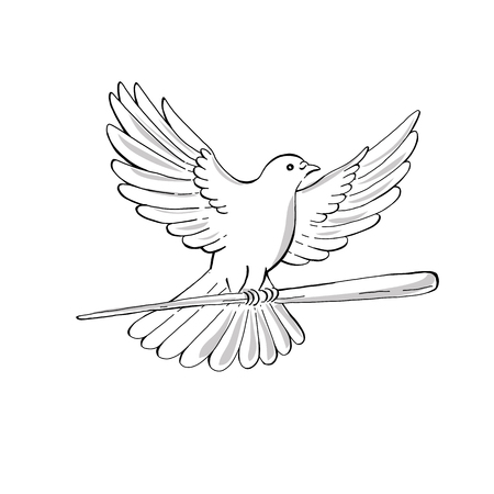 Drawing sketch style illustration of a soaring dove or pigeon with wing spread flying clutching a wooden staff or cane viewed from side on isolated background.  Illustration
