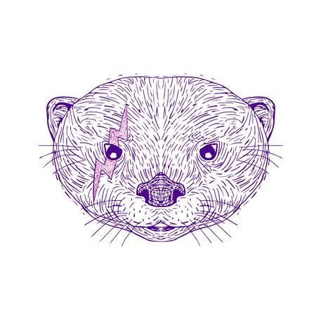 孤立した背景にスケッチスタイルを手描きする目の近くに稲妻を持つアジアの小さな爪のカワウソの頭のイラスト。  イラスト・ベクター素材