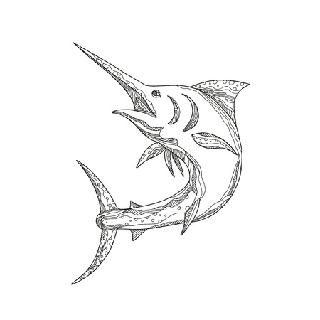 Atlantic blue marlin outline image Illustration
