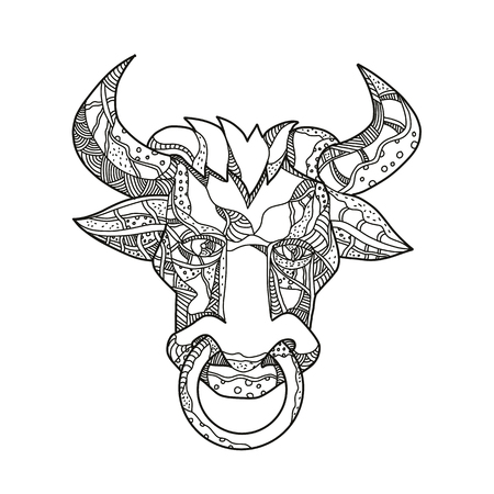 Doodle art illustration of head of Pinzgauer bull or cow, a breeed of  domestic cattle from Pinzgau region, Austria front view in black and white done in mandala style.