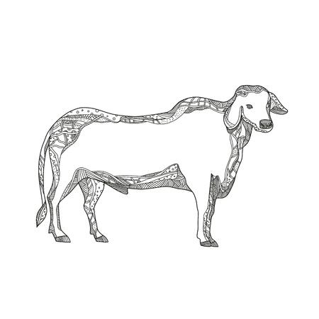 ブラフマンやブラフマの雄牛の落書きアートイラストは、マンダラスタイルで行われた黒と白で横から見たゼブ牛の品種。