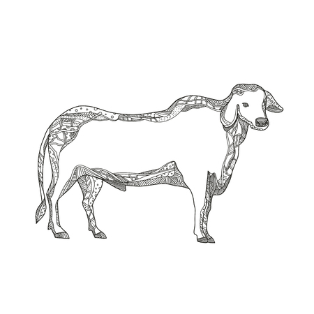 Doodle art illustration of a Brahman or Brahma bull, a breed of Zebu cattle viewed from side in black and white done in mandala style.