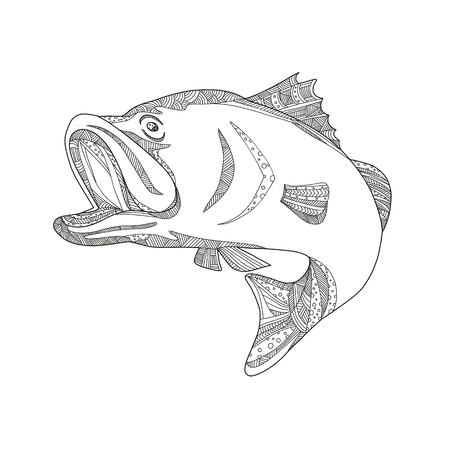 Doodle art illustration of a barramundi or Asian sea bass (Lates calcarifer), a species of catadromous fish jumping in black and white done in mandala style.