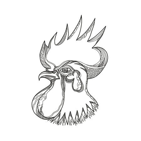 Doodle art illustration of head a junglefowl; ,ooster, cockerel or male chicken, a male gallinaceous bird viewed from side done in black and white mandala style.