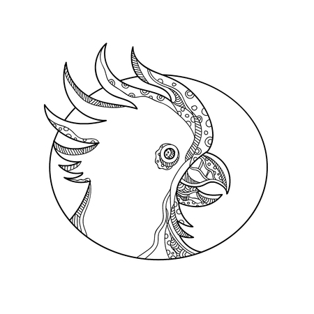 Doodle art illustration of head of cockatoo, a parrot that belongs to the bird family Cacatuidae, in black and white set inside circle done in mandala style.