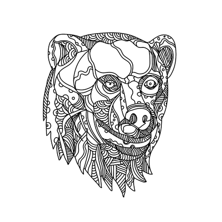 Doodle art illustration of head of a brown bear, carnivoran mammal of the family Ursidae classified as caniforms, or doglike carnivorans done in black and white mandala style. Illustration
