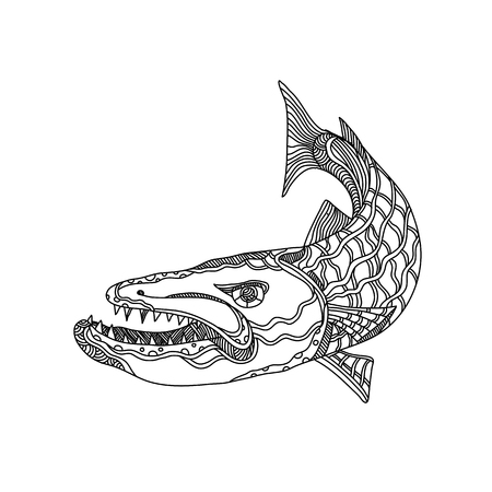 Doodle art illustration of barracuda, a saltwater ray-finned fish of the genus Sphyraena known for its large size, fearsome appearance and ferocious behaviour done in black and white mandala style.