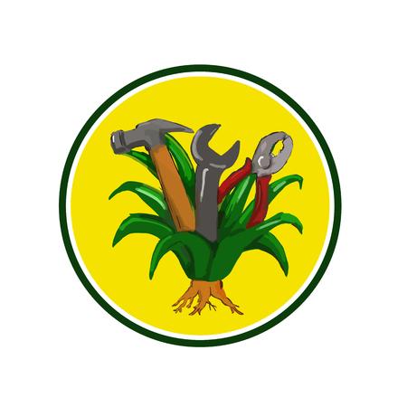 망치, 스 패너 및 펜 치 도구 그것 안에 성장 원 안에 설정 agave 식물, 멕시코와 미국 남서부 네이티브 monocot의 물 컬러 스케치 스타일 그림. 일러스트
