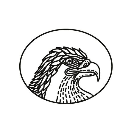 ●ウミワシの頭部のモノラインイラスト、ハゲワシ、アシピリダエの獲物の大きな鳥、モノラインスタイルで行われた楕円形の内側の側面セットか  イラスト・ベクター素材