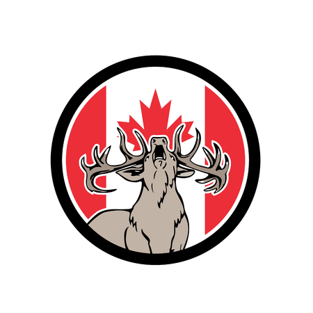 Icon retro style illustration of a Canadian stag deer roaring viewed from front  with Canada maple leaf flag set inside circle on isolated background.