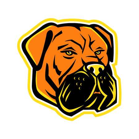Mascot icon illustration of head of Bullmastiff, a large-sized breed of domestic dog, with characteristics of molosser dogs, and developed to guard estates on isolated background in retro style.