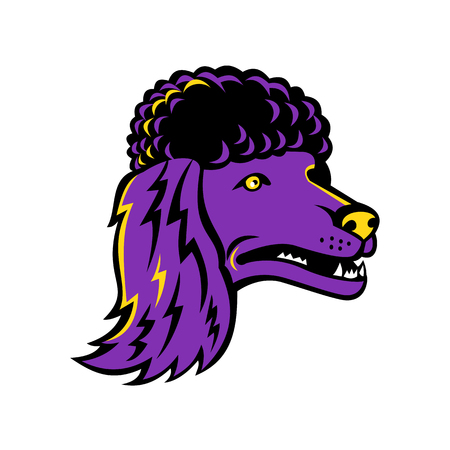 Mascot icon illustration of head of a poodle, group of formal dog breeds, the Standard Poodle, Miniature Poodle and Toy Poodle viewed from side on isolated background in retro style. Illustration