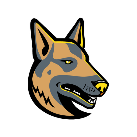Mascot icon illustration of head of a German Shepherd, GSD, Alsatian wolf dog Berger, Allemand ,Deutscher, a breed of medium to large-sized working dog on isolated background in retro style.