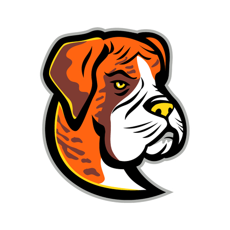 Mascot icon illustration of head of a Boxer dog, German Boxer or Deutscher Boxer,  a medium-sized, short-haired breed of dog viewed from front on isolated background in retro style.