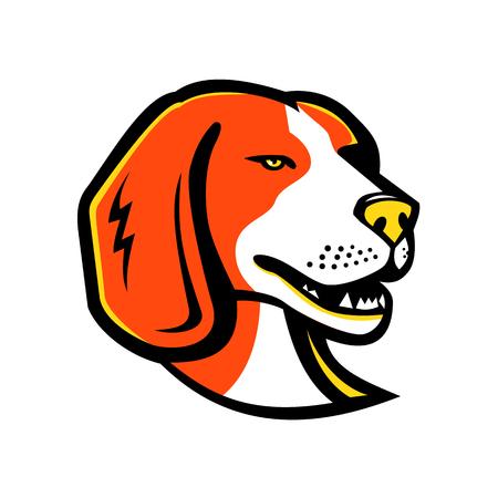 비글, 사냥개 또는 복고 스타일에서 격리 된 배경에 foxhound와 외관에 비슷한 작은 향기 사냥개의 머리의 마스코트 아이콘 그림. 복고 스타일에 고립 된 배경에. 스톡 콘텐츠 - 98821302