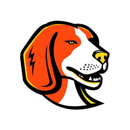 Mascot icon illustration of head of a beagle, a hunting dog or a small scent hound similar in appearance to foxhound on isolated background in retro style. on isolated background in retro style. Иллюстрация