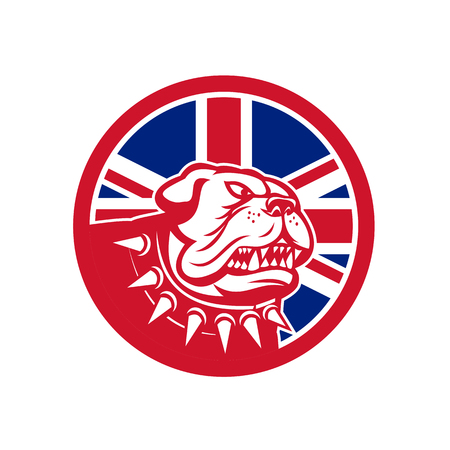Icon retro style illustration of head of an English Bulldog or British Bulldog waering spiked collar with United Kingdom UK, Great Britain Union Jack flag set inside circle on isolated background. Ilustração