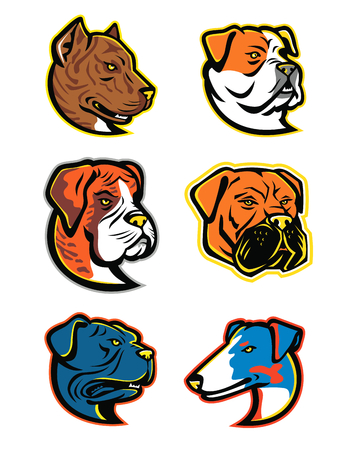 Mascot icon illustration set of heads of bulldogs and terriers isolated background in retro style. Ilustração