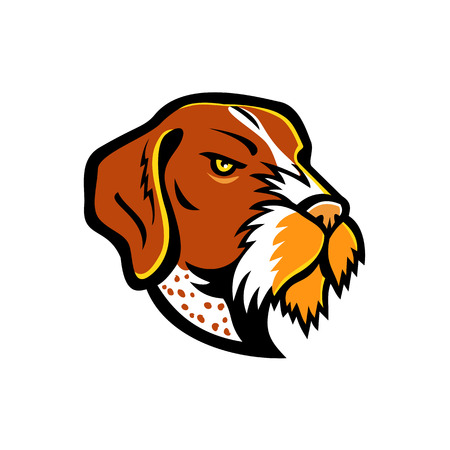 Mascot icon illustration of head of a German Wirehaired Pointer, a medium to large-sized griffon type breed of dog viewed from side on isolated background in retro style. Illustration