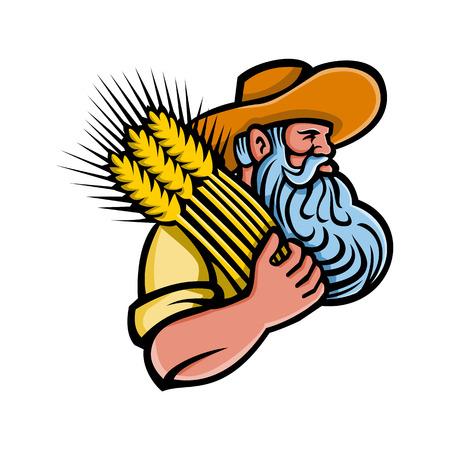 Icona della mascotte illustrazione della testa di un coltivatore di grano biologico con la barba che tiene un mazzo di grano essiccato cercando di lato su sfondo isolato in stile retrò. Vettoriali