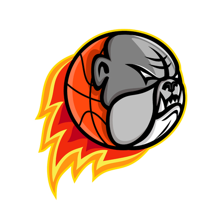 Sports mascot icon illustration of head of a bulldog on blazing or flaming basketball ball on fire viewed from side on isolated background in retro style.