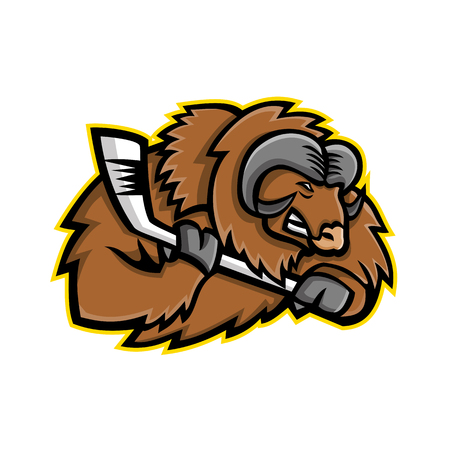 Mascot icon illustration of head of a muskox, musk ox or musk-ox, an Arctic hoofed mammal of the family Bovidae, with ice hockey stick viewed from side on isolated background in retro style. Çizim