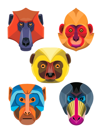 Flat icon mascot style illustration of heads of Old World monkeys like the baboon,  white-headed, golden-headed or Cat Ba langur,  diademed sifaka or diademed simpona lemur , rhesus macaque and the mandrill or drill viewed from front  on isolated background in retro style.