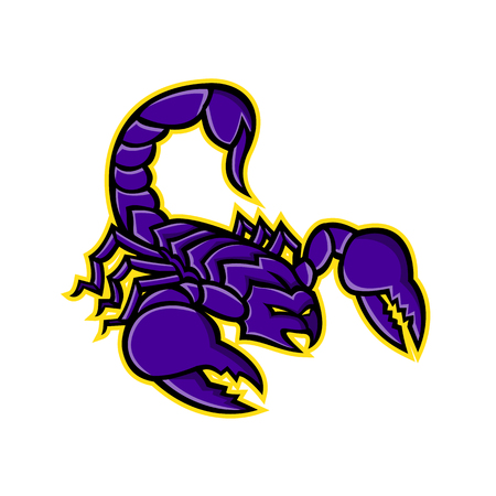 Mascot icon illustration of a scorpion, a predatory arachnid of the order Scorpiones, with sting in it's tail or venomous stinger about to strike on isolated background in retro style. Illustration