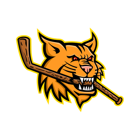 Mascot icon illustration of head of a bobcat, a North American cat, biting a broken ice hockey stick viewed from side on isolated background in retro style.