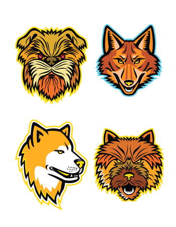 Mascot icon illustration set of heads of terriers and wolves or canids, like the Affenpinscher dog or Monkey Terrier, coyote, wolf, coydog or wild dog, Japanese Akita Inu and the Norwich terrier viewed from front on isolated background in retro style.