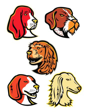 Insieme dell'illustrazione dell'icona della mascotte delle teste dei cani da caccia come il basset hound, il cane da puntatore a pelo duro tedesco, il cocker spaniel inglese, il beagle e il saluki, levriero arabo o Tazi, visto dal lato su sfondo isolato in stile retrò.