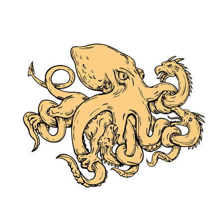 Drawing sketch style illustration of a giant octopus, soft-bodied, eight-armed mollusc , fighting or grappling with a Lernaean hydra, a many-headed serpent in Greek mythology on isolated background.