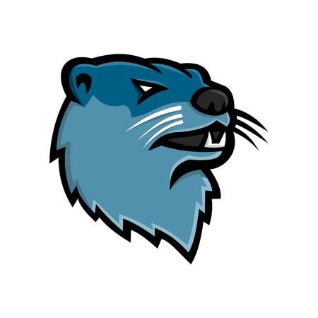 Mascotte icona illustrazione della testa di una lontra di fiume nordamericana, lontra di fiume settentrionale o la lontra comune, un mammifero semiaquatico endemico del Nord America su sfondo isolato in stile retrò.